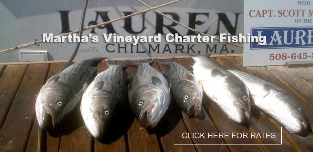 Martha's Vineyard Charter Fishing